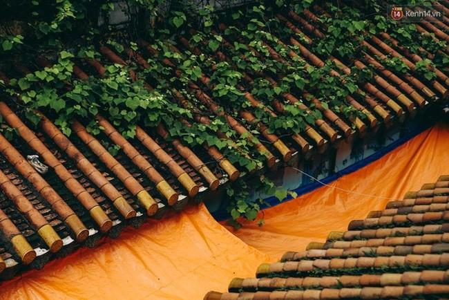 Chuyện về ông chủ Chợ Lớn ở Sài Gòn: Từ kẻ vô gia cư trở thành tỷ phú thế kỷ 20 - Ảnh 13.