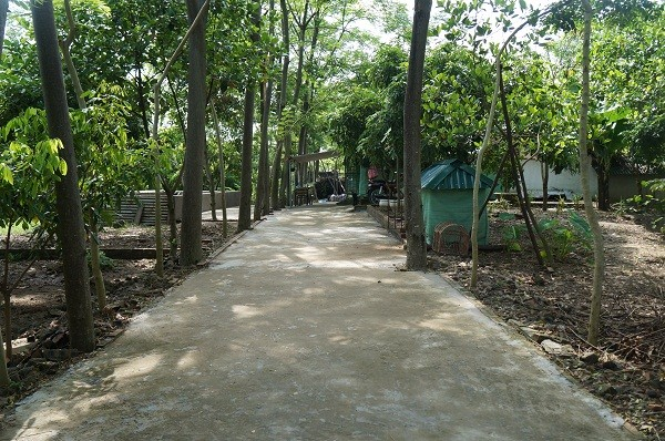 Tường rào và đường bê tông kiên cố