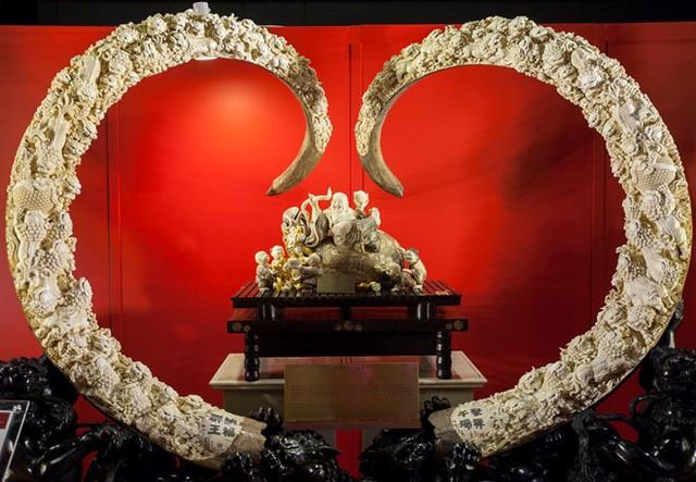 Ngày nay, ngà voi ma mút được chạm khắc kỳ công và bán với giá 1 triệu USD cho mỗi chiếc. Chapple cho hay mức giá cao đã nhanh chóng thúc đẩy nhu cầu ngà voi ở Trung Quốc.