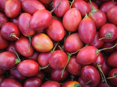 Đi chợ trái cây ngoại1