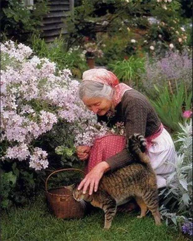 Bà cũng dành nhiều tình yêu và sự chăm sóc cho động vật