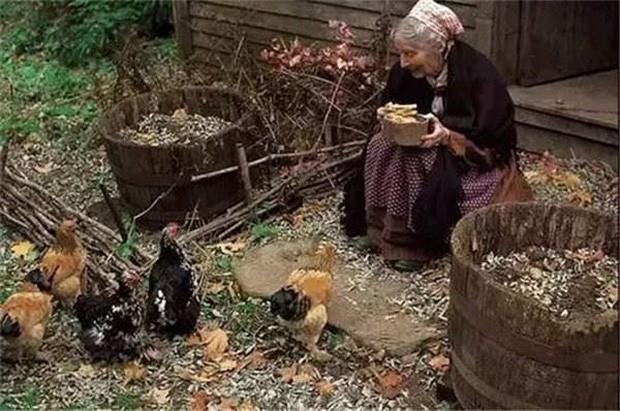Sống chan hòa với thiên nhiên, bà Tasha đã có những tháng thực sự an yên với việc dành thời gian chăm sóc khu vườn, nấu ăn và tận hưởng những khoảnh khắc vui vẻ, thư thái. Ngôi nhà của bà về tiện nghi có thể thua kém những không gian hiện đại, nhưng sự an yên, tự tại của nó hẳn sẽ khiến nhiều người trầm trồ, mơ ước.