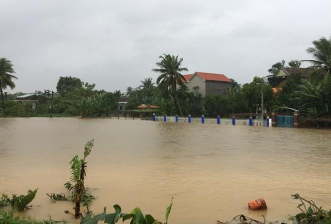 ngập lụt - ảnh 13