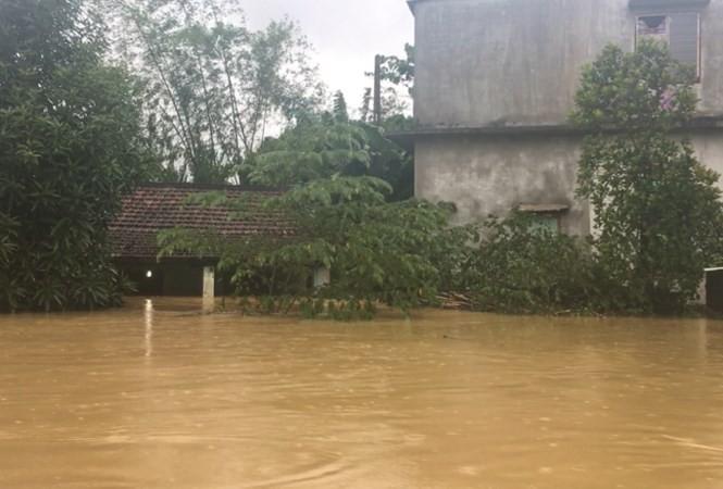 ngập lụt - ảnh 16