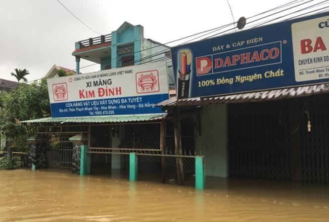 ngập lụt - ảnh 6