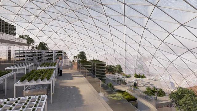 Dubai chi 140 triệu USD cho dự án Sao Hỏa trên Trái đất