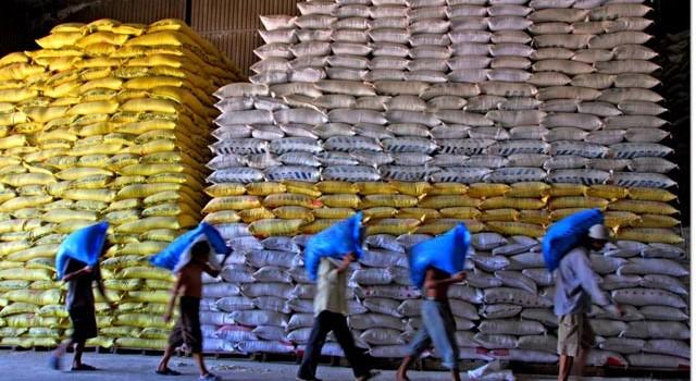 Xuất khẩu gạo quý II: Việt Nam kẹt giữa hai áp lực