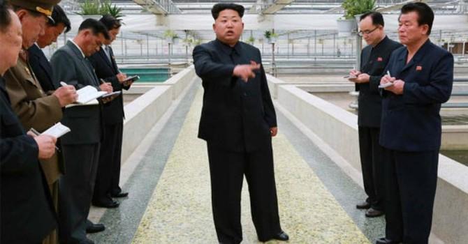 Kim Jong Un quát mắng, điềm xấu cho công nhân ở trại nuôi rùa