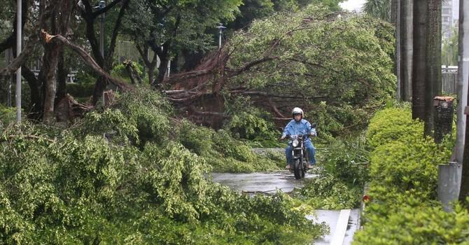 Bão Soudelor: Thiệt hại nặng tại Đài Loan trước khi ập vào Trung Quốc