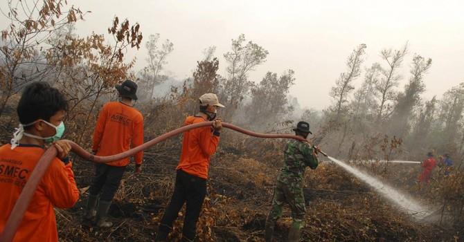 """Indonesia đốt rừng, Malaysia và Singapore """"gặp hạn"""""""