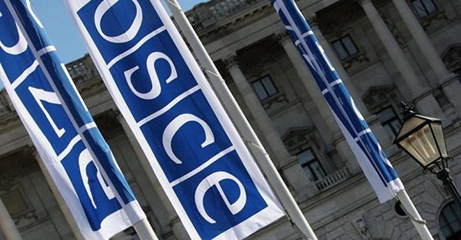 Đọc dự thảo về Crimea, phái đoàn Nga rời phiên họp Nghị viện OSCE