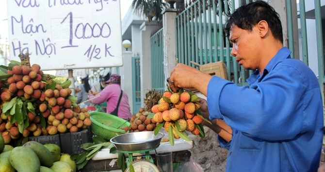 Chợ bán trái cây miền Bắc nở rộ trên đường phố Sài Gòn