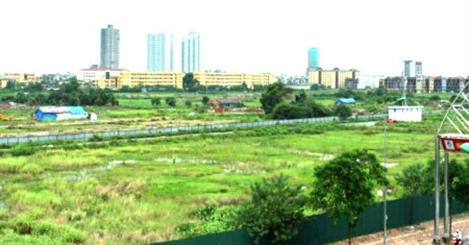 TP.HCM được chuyển 150ha đất lúa thành đất xây dựng