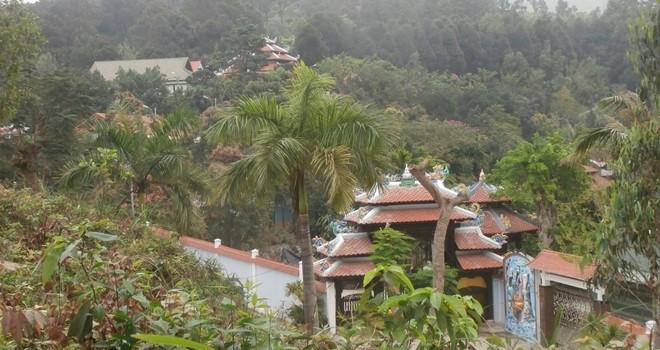 Đà Nẵng: Thu hồi, thanh lý hợp đồng giao khoán đất đối với ông Phan Như Thạch