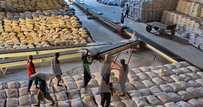 Xúc tiến đưa nông sản Việt Nam sang thị trường Trung Quốc