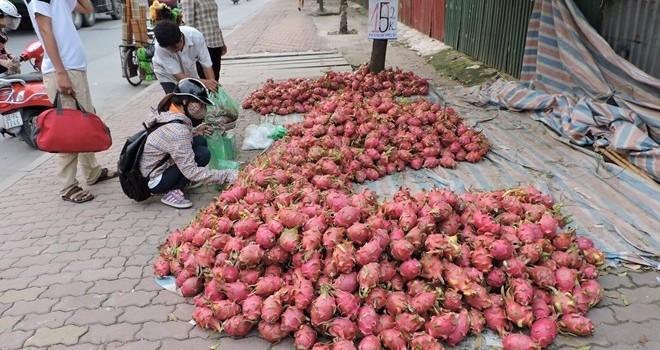 """Nông sản Việt bị """"cướp"""" mất thị trường"""