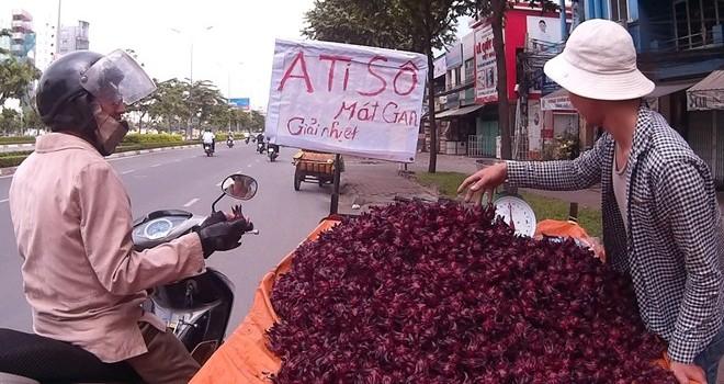 """Cây bụi vùng quê thành """"thần dược"""" trên phố Sài Gòn"""