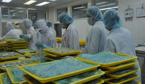 Trầy trật đưa hàng thủy sản vào siêu thị
