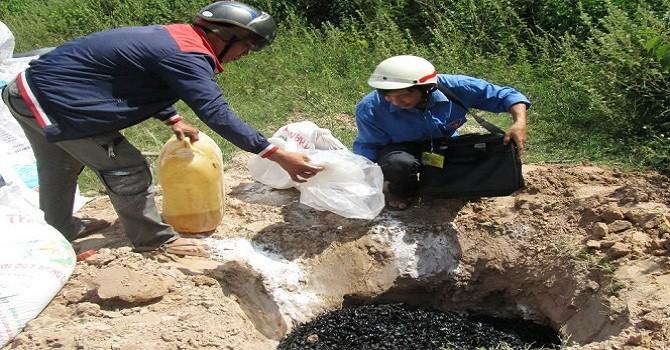 Phát hiện và tiêu hủy 72 kg đỉa phơi khô nhập lậu