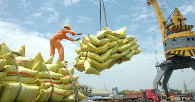 Xuất khẩu gạo 10 tháng đầu năm giảm mạnh