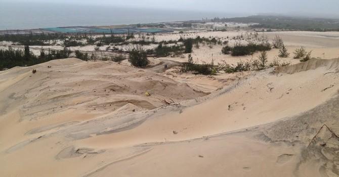 Thu hồi dự án 4,5 tỷ USD Khu du lịch Cali Biển Bình Thuận