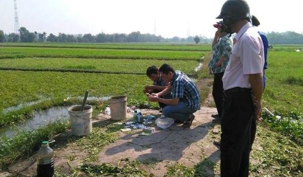Công nghệ tưới nhớt bẩn trong nghề trống rau muống ở TP.HCM