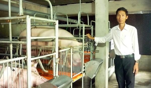 Đánh liều vay 2 tỷ đồng nhập hệ thống lạnh để nuôi... lợn Mỹ