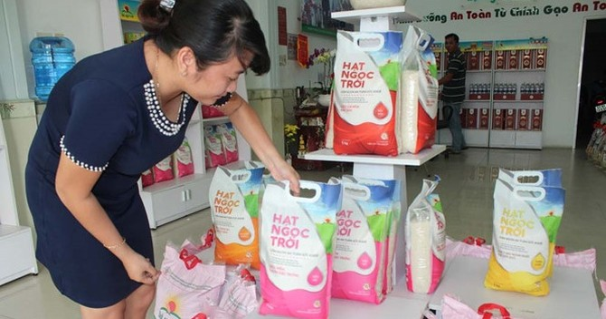 """Hoang mang vì thực phẩm bẩn: Tìm """"lối thoát"""" cho người tiêu dùng"""