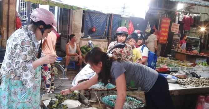 Cá chết trắng biển miền Trung, thị trường hải sản Hà Nội vẫn nhộn nhịp