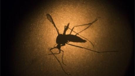 Cô gái Hàn Quốc nhiễm virus Zika sau khi trở về từ Việt Nam