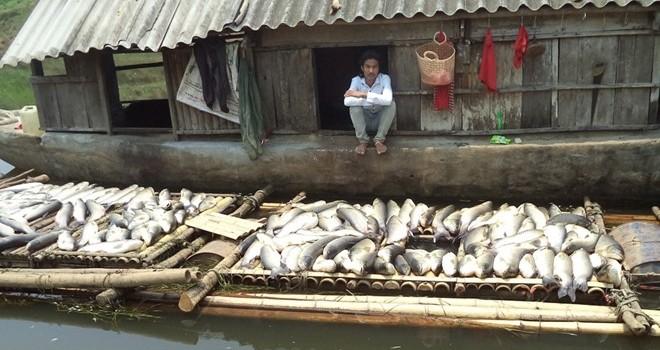 Xử phạt 3 cơ sở gây ô nhiễm sông Bưởi gần 4 tỷ đồng