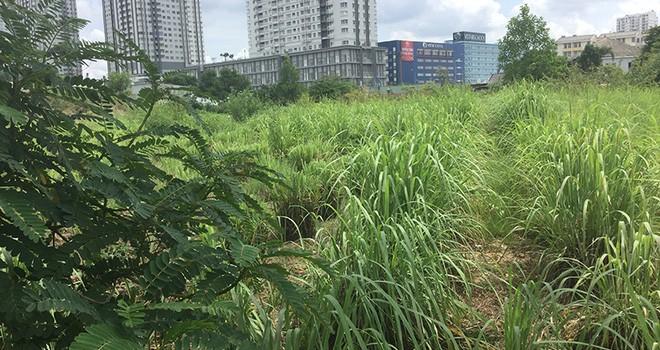 """Cận cảnh loạt """"đất vàng"""" bỏ hoang của Công ty Phương Trang tại TP.HCM"""