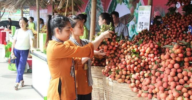 Gần 63.000 tấn vải thiều Bắc Giang đã được xuất sang Trung Quốc
