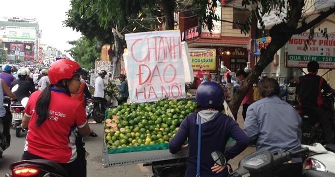 Bán dạo chanh đào tại Sài Gòn kiếm tiền triệu mỗi ngày