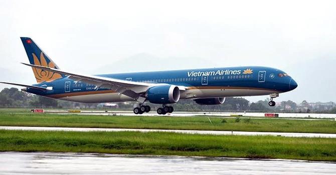 Chim va hỏng động cơ máy bay xịn nhất của Vietnam Airlines