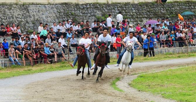 Địa ốc 24h: Đại gia Hàn Quốc muốn xây trường đua ngựa 500 triệu USD tại Bắc Ninh