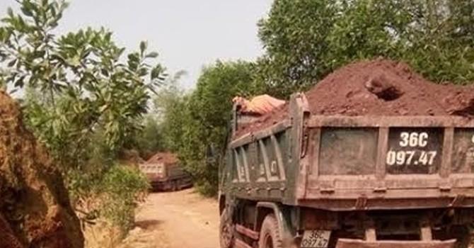 Thanh Hóa: Khai thác đất sai vị trí, sử dụng sai mục đích