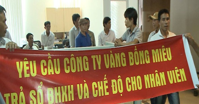 50 công nhân, kỹ sư yêu cầu công ty Vàng Bồng Miêu trả sổ bảo hiểm xã hội