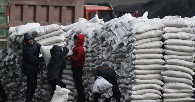 Giá lương thực thế giới giảm xuống gần mức thấp nhất 5 năm