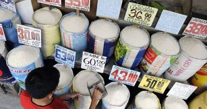 Lượng gạo xuất khẩu của Mỹ tạo áp lực đàm phán TPP với Nhật