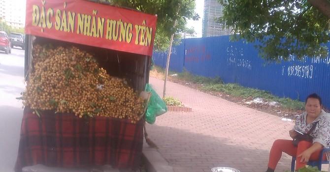 """""""Nhãn lồng Hưng Yên đang bán tại Hà Nội chắc chắn là giả mạo"""""""