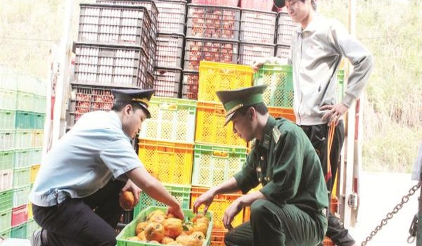 Cạnh tranh với hàng Trung Quốc: Trong, ngoài đều lo