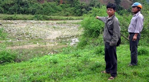 Lúa bỏ hoang vì chờ thủy lợi