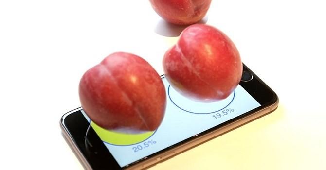 Công nghệ 24h: Cân hoa quả bằng iPhone, cỗ máy xây cầu gần 1.000 tấn
