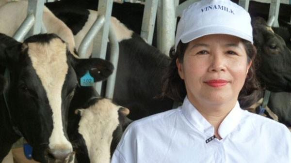"""Bán con bò sữa tỷ đô: """"Béo đẹp"""" phải kén chọn cẩn trọng"""