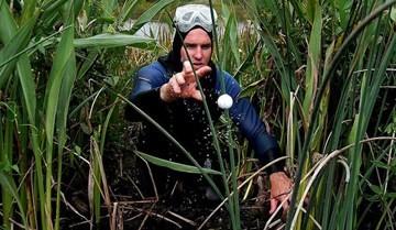 Thành tỷ phú nhờ... nhặt bóng golf