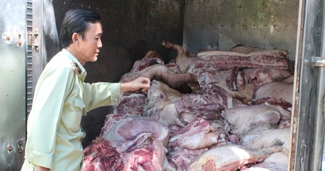 Thu mua hơn 4 tấn thịt heo chết, thối rửa nổi hạch bán ra thị trường
