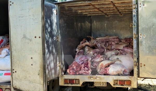 Phạt 11 triệu đồng chủ cơ sở tuồn thịt lợn bẩn vào chợ Bình Dương
