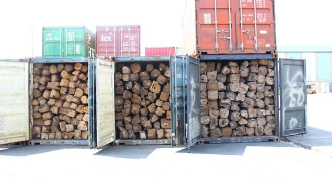 Bắt giữ 6 container gỗ xuất lậu tại cảng Cát Lái