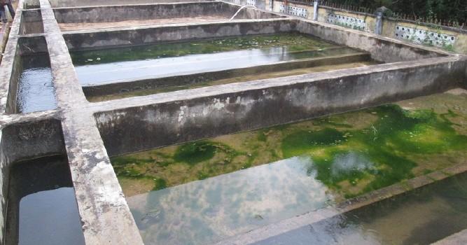 Khánh Hòa: Nhà máy nước sạch cũng bị nhiễm độc